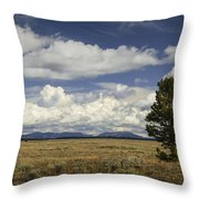 Lone Tree In The Grand Teton National Park Throw Pillow