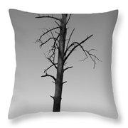 Lone Tree Throw Pillow