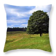 Lone Tree On Grassy Knoll Throw Pillow