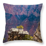 Lone Tree On Outcrop Grand Canyon Throw Pillow