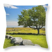 Lone Tree With Blue Sky In Blueberry Field Maine Throw Pillow