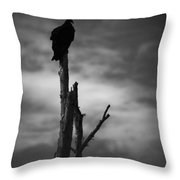 Lone Vulture Throw Pillow