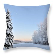 Lone Winter Spruce - Alaska Throw Pillow