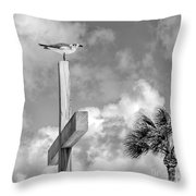 Lonely At The Top Throw Pillow by Lynn Palmer