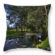 Lonely Creek Throw Pillow
