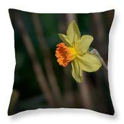 Lonely Daffodil Throw Pillow