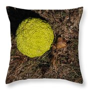 Lonely Hedge Apple Throw Pillow