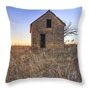 Lonely Homestead Throw Pillow