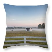 Lonely Horse Throw Pillow