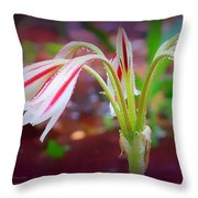 Lonely Lilly Throw Pillow