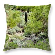 Lonely Little Saguaro Throw Pillow