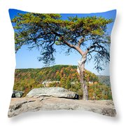 Lonely Lonesome Pine Throw Pillow