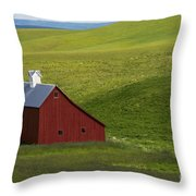 Lonely Red Throw Pillow