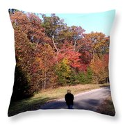 Lonely Road Home Throw Pillow