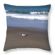 Lonely Sea Gull Throw Pillow