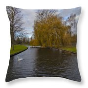 Lonely Swan Throw Pillow