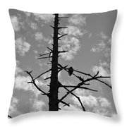 Lonely Vulture Throw Pillow
