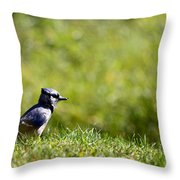 Lonesome And Blue Throw Pillow