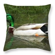 Lonesome Duck Throw Pillow