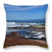 Lonesome Gull Throw Pillow