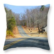 Long About Now Throw Pillow