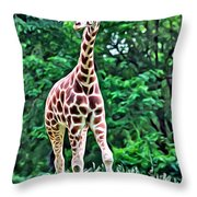 Long Throw Pillow