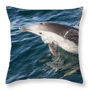 Long-beaked Common Dolphin Porpoising Throw Pillow