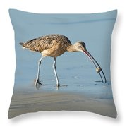 Long-billed Curlew Catching Crab Throw Pillow