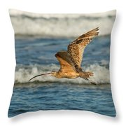 Long-billed Curlew Flying Over The Surf Throw Pillow