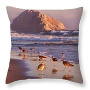 Long Billed Curlew - Morro Rock Throw Pillow