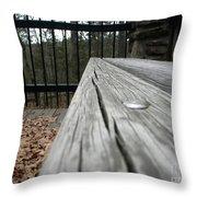 Long Board Throw Pillow