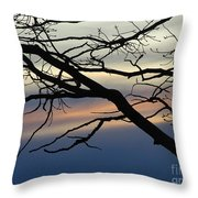 Long Branch Throw Pillow