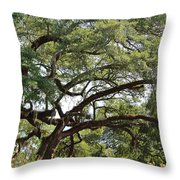 Long Branches Throw Pillow