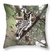 Long Eared Owl At Attention Throw Pillow