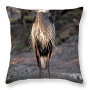 Long Gotee Throw Pillow