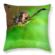 Long Legger Throw Pillow