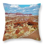 Long Logs Trail In Rainbow Forest In Petrified Forest National Park-arizona  Throw Pillow