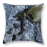 Long Night Throw Pillow by Gabe Arroyo