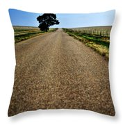 Long Road Throw Pillow