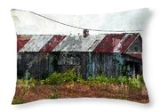 Long Since Abandoned - Back To Nature Throw Pillow