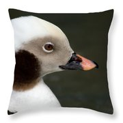 Long-tailed Duck Throw Pillow