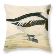 Long Tailed Duck Throw Pillow