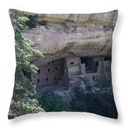 Long View Of Spruce Tree House Throw Pillow