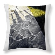 Long Wait In The Shade Throw Pillow