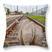 Rhino On A Railway Track Throw Pillow