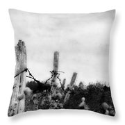 Long Way To Touch  Throw Pillow