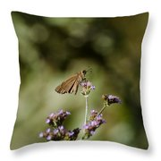 Long-winged Skipper Butterfly Throw Pillow