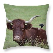 Longhorn And Friend Throw Pillow