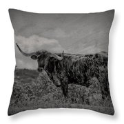 Longhorn Of Bandera Throw Pillow