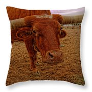 Longhorn Portrait Throw Pillow